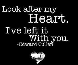 edward, quote, and twilight image