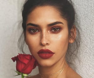 red, instagram model, and red rose image