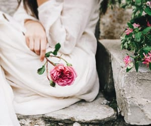 romantic and flower image