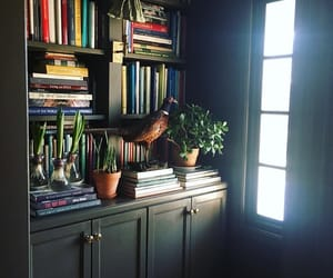 bookcases, books, and home decor image