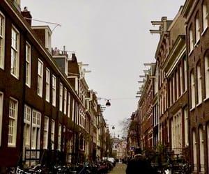 amsterdam, frasi, and tumblr image