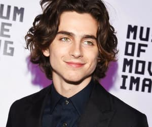 timothee chalamet, handsome, and Hot image