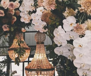 flowers and chandelier image