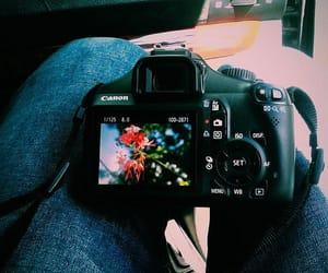 app, feed, and like image