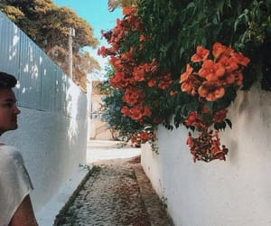 flowers, places, and home image