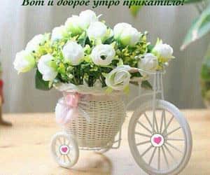Image by Jasmina Sargsyan