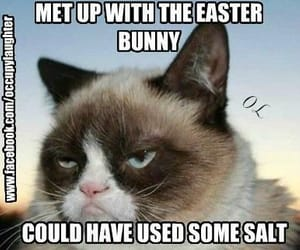 easter, grumpy cat, and easter bunny image