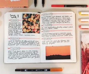 bullet, journal, and orange image