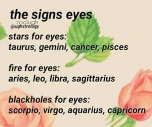 astrology, horoscope, and signs image