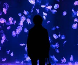 35mm, aquarium, and china image