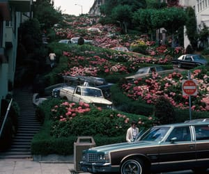 80s, california, and flowers image