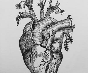 article, heart, and poem image