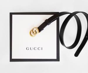 gucci, belt, and fashion image