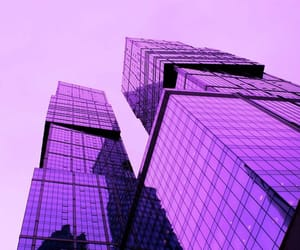 purple and building image