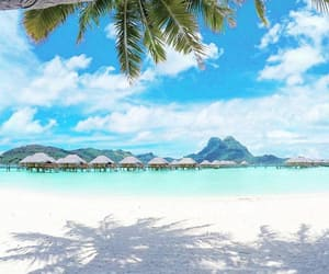 beach, bora bora, and holidays image