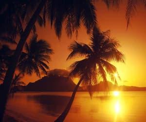 sunset, summer, and beach image