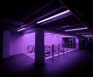 purple and neon image