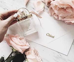 chloe, rose, and perfume image