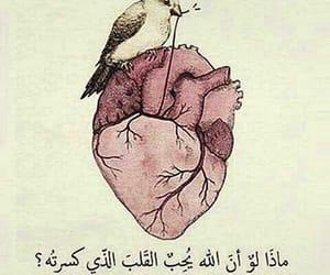 heart, ماذا, and love image