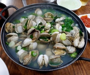 aesthetic, clams, and food image