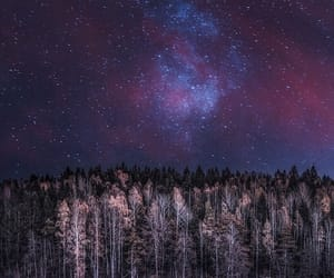 forest, galaxy, and grunge image