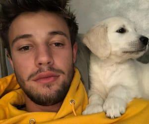 cameron dallas, dog, and puppy image