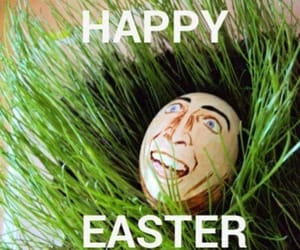easter, easter eggs, and lol image