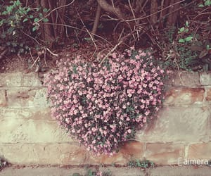 city, flower, and heart image