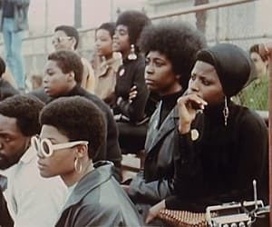 black panthers image