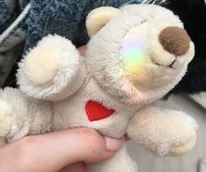 bear, rainbow, and color image