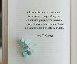 Besos, felicidad, and love quotes image