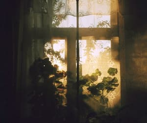 window, vintage, and photography image