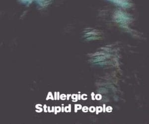 allergic, people, and stupid image