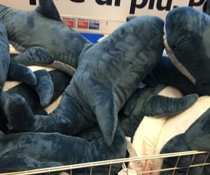 blue, ikea, and sharks image