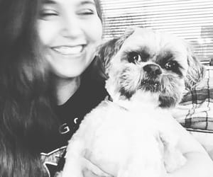 b&w, happy, and puppy image