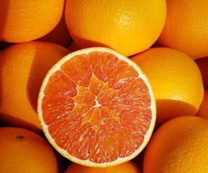 aesthetics, art, and orange image