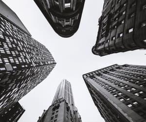 new york, new york times, and tumblr image