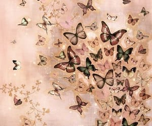 background, mariposas, and wallpaper image