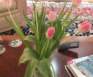 tulips, 💐, and 🌷 image