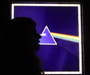 bands, music, and Pink Floyd image