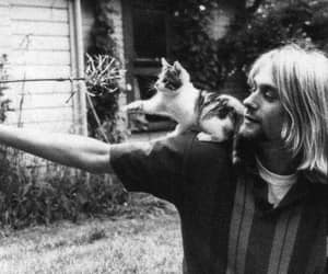 kurt cobain, cat, and nirvana image