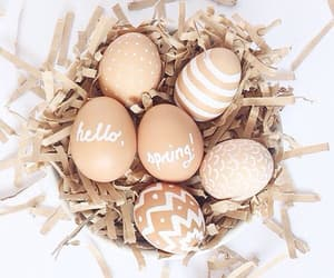 easter, spring, and eggs image