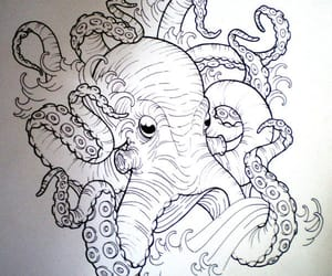 drawing and octopus image