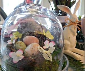 bunny, easter, and bunnydecorideas image
