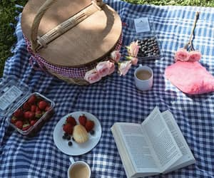 afternoon, book, and picnic image