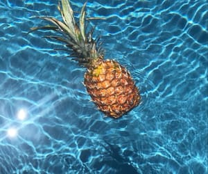 ananas, blue, and picture image