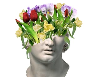 aesthetic, flower, and art image