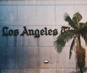 los angeles, la, and palms image