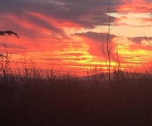 orange, sunsets, and sky image