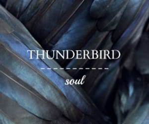 thunderbird and ilvermorny image